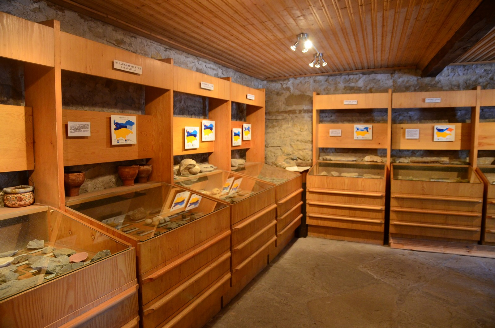Elena - Attraction Museum of Paleontology - Elena - Picture 5