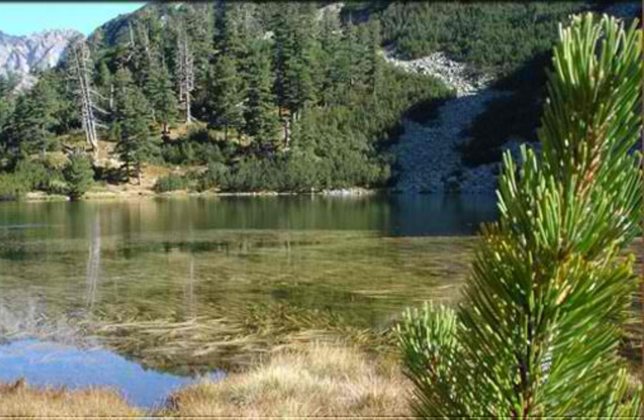 Bansko - Attraction Yulen Reserve - Picture 4